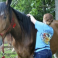 """Annual party celebrates horse's birthday"" featured in the Rocky Mount Telegram"