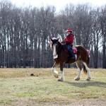 HorseParade18