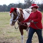 HorseParade20
