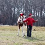 HorseParade22