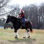 HorseParade26