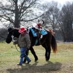 HorseParade27