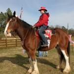 HorseParade3